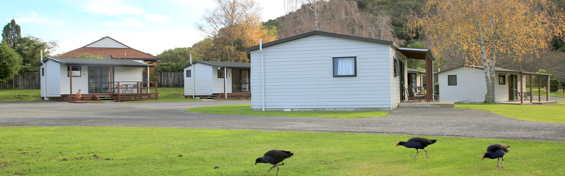 Self Contained Units At Parklands Marina Holiday Park In Picton NZ